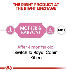 Royal Canin First Age Mother & Babycat Dry Cat Food
