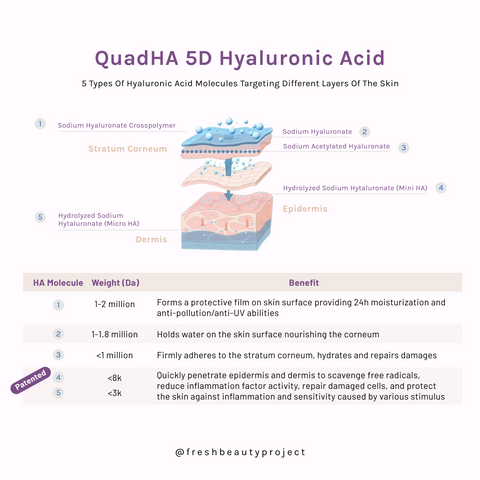 Hyaluronic acid serum 5D HA technology Fresh Beauty Project
