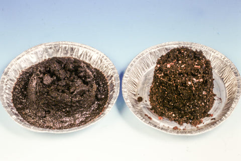 example of two types of houseplant soil