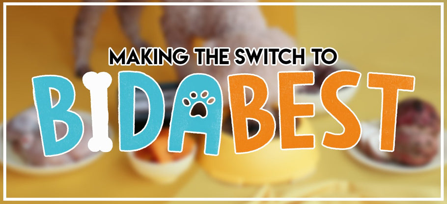 Making the Switch to BidaBest