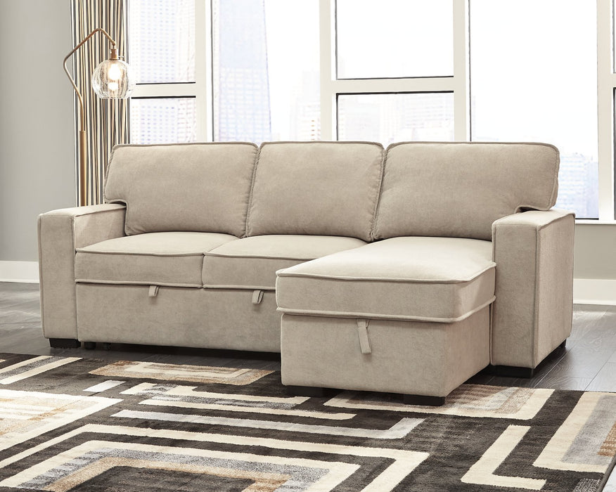 Darton Signature Design by Ashley 2-Piece Sleeper Sectional with Storage image