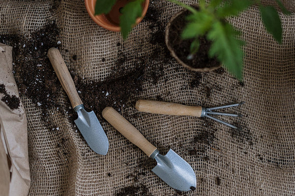 Quick and easy ways to give your garden a makeover!