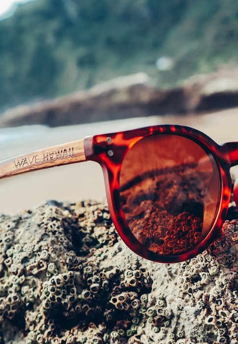 WAVE HAWAII Sonnenbrille X-UP