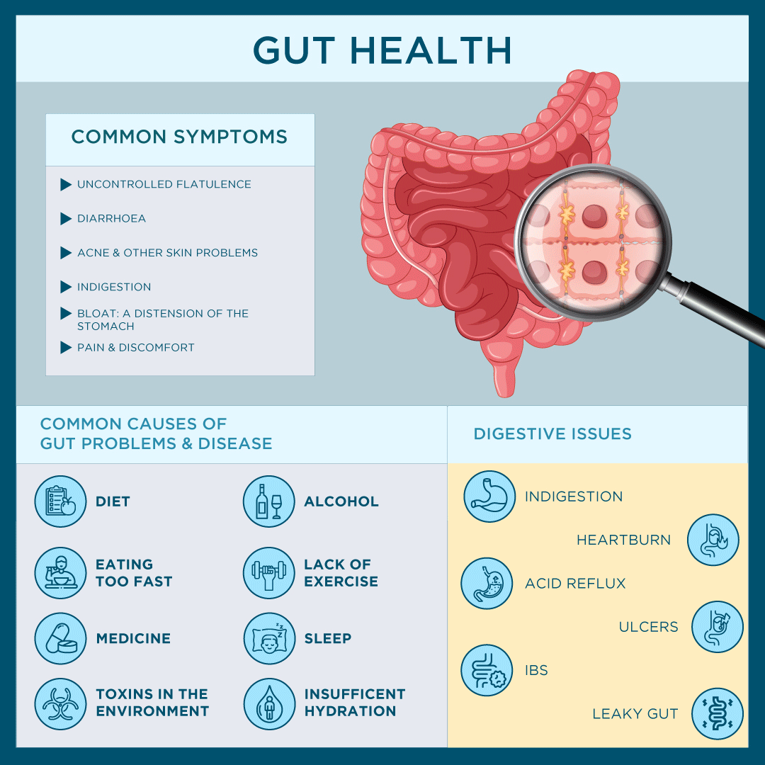 Gut Health - Causes, Symptoms & Issues Infographic