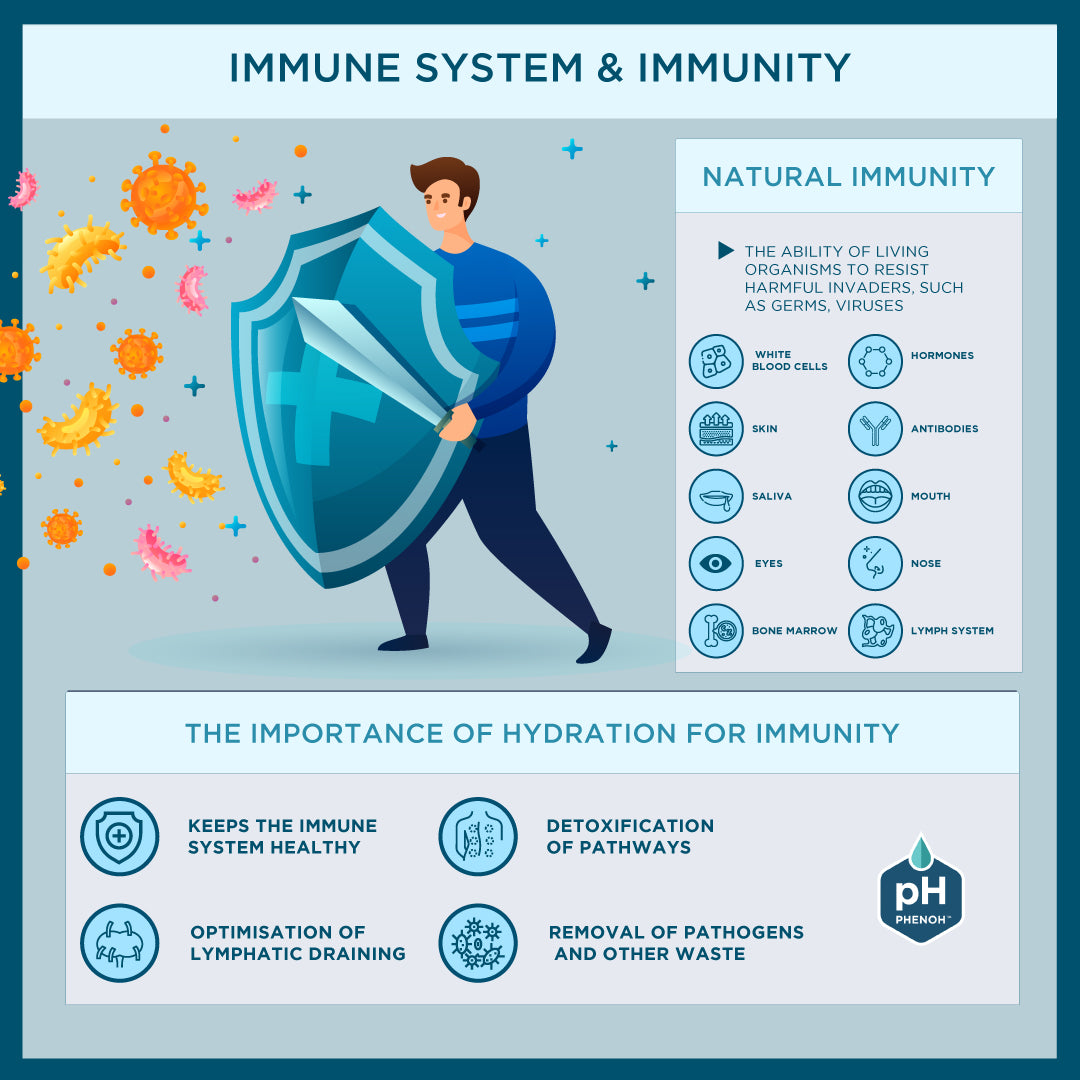 How The Immune System & Natural Immunity Work Infographic