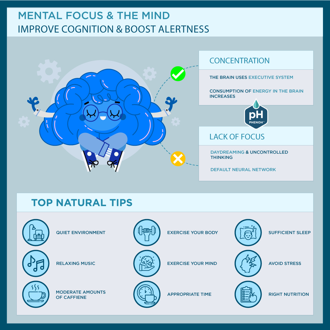 Mental Focus & The Mind: Top Natural Tips Infographic