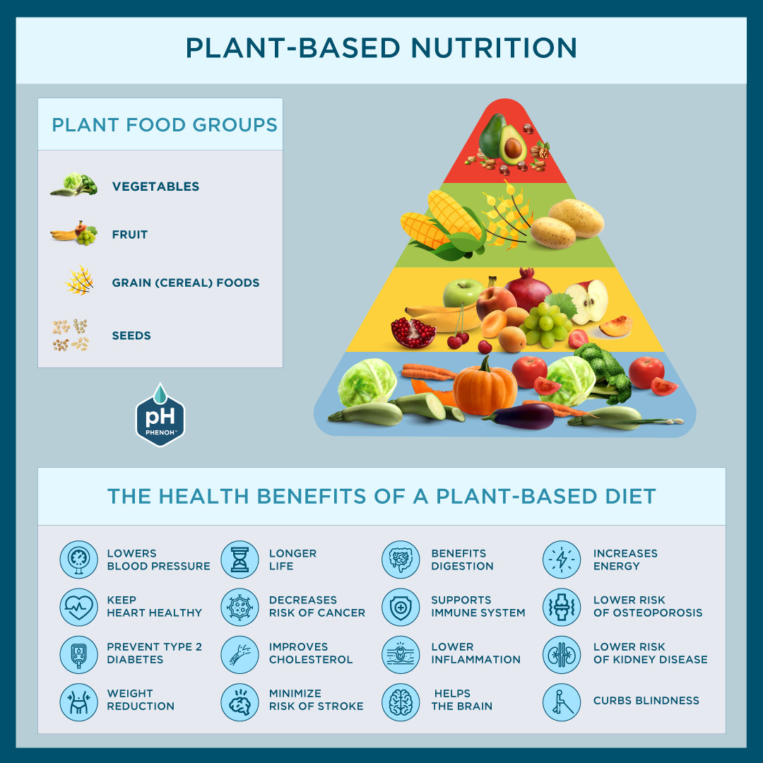 Plant-Based Nutrition Food Groups & Health Benefits
