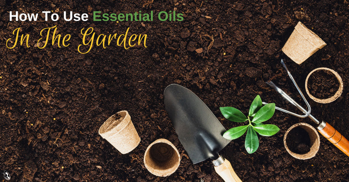 How To Use Essential Oils In The Garden
