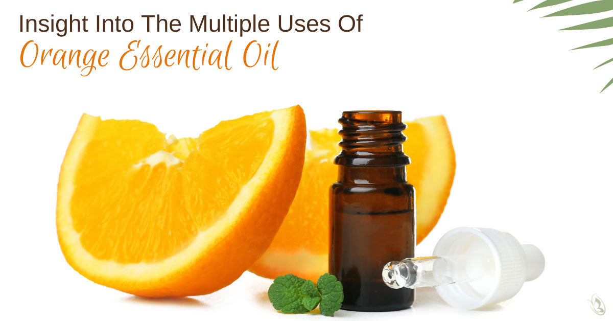 Insight Into The Multiple Uses Of Orange Essential Oil