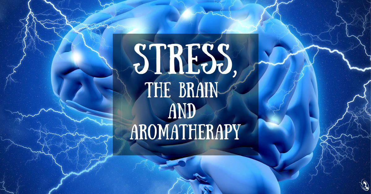 Stress, the Brain and Aromatherapy