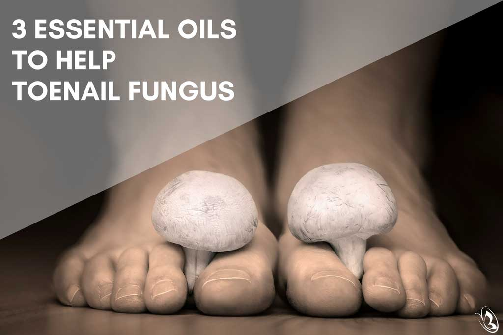 Essential Oils and Toenail Fungus
