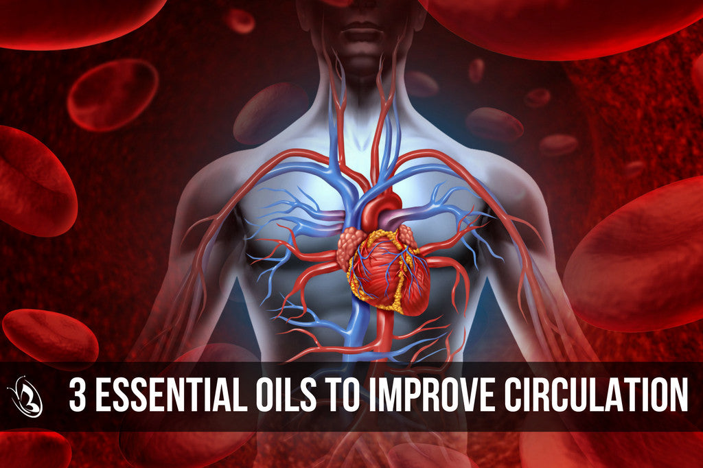 3 Essential Oils To Improve Circulation Organic Aromas