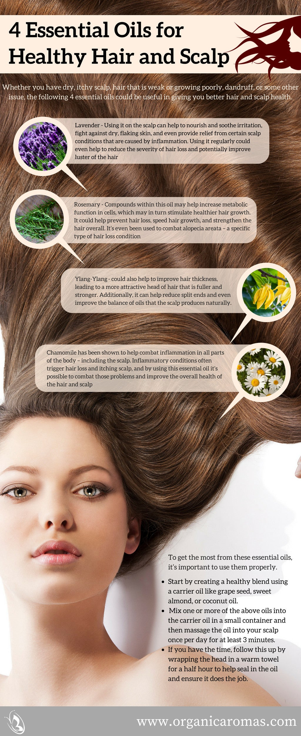 4 Essential Oils For Healthy Hair And Scalp Organic Aromas