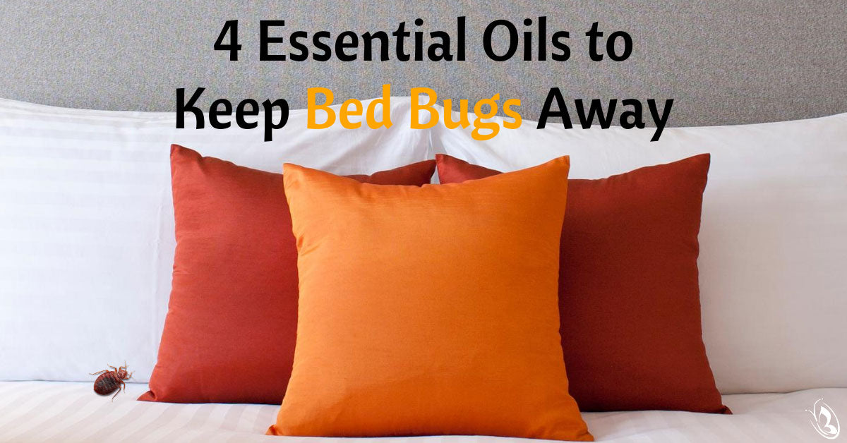 4 Essential Oils to Keep Bed Bugs Away