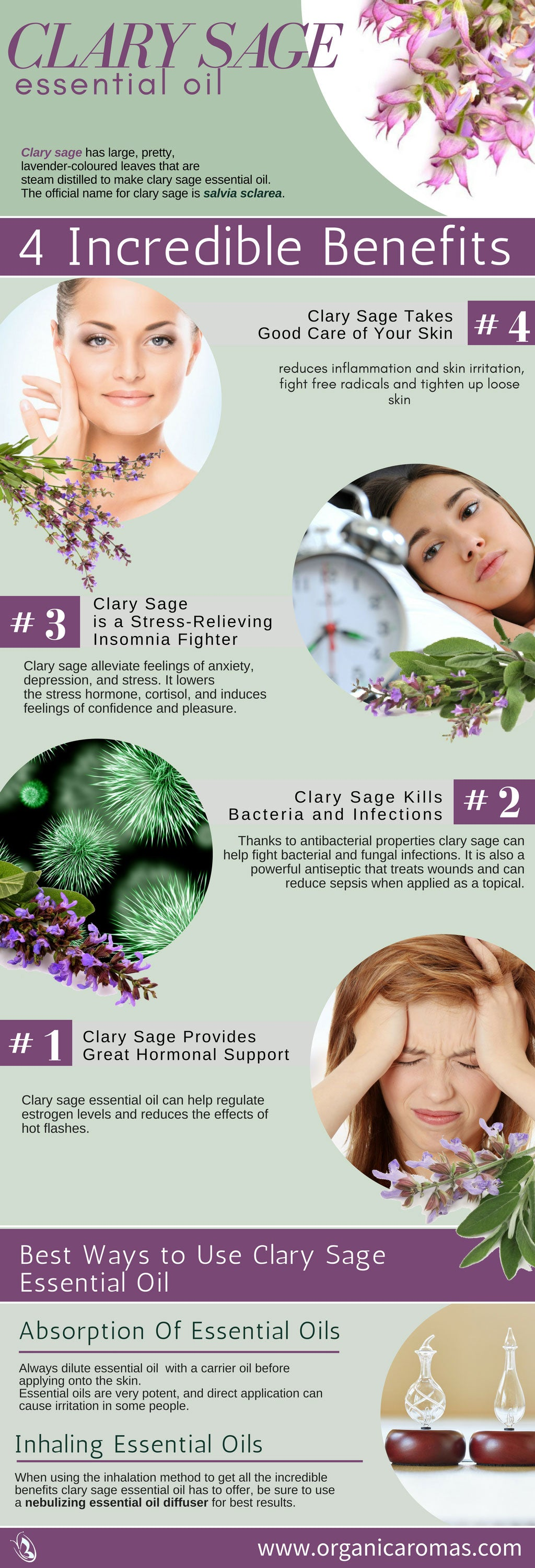 4 Incredible Benefits Clary Sage Essential Oil Organic Aromas