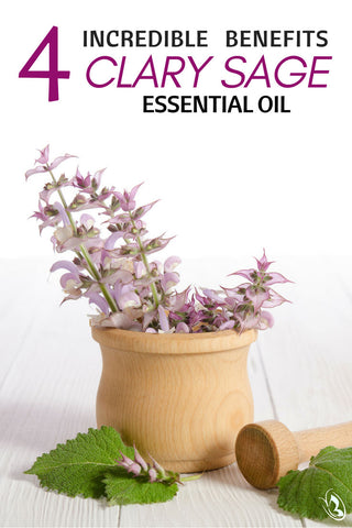 4 Incredible Benefits of Clary Sage Essential Oil