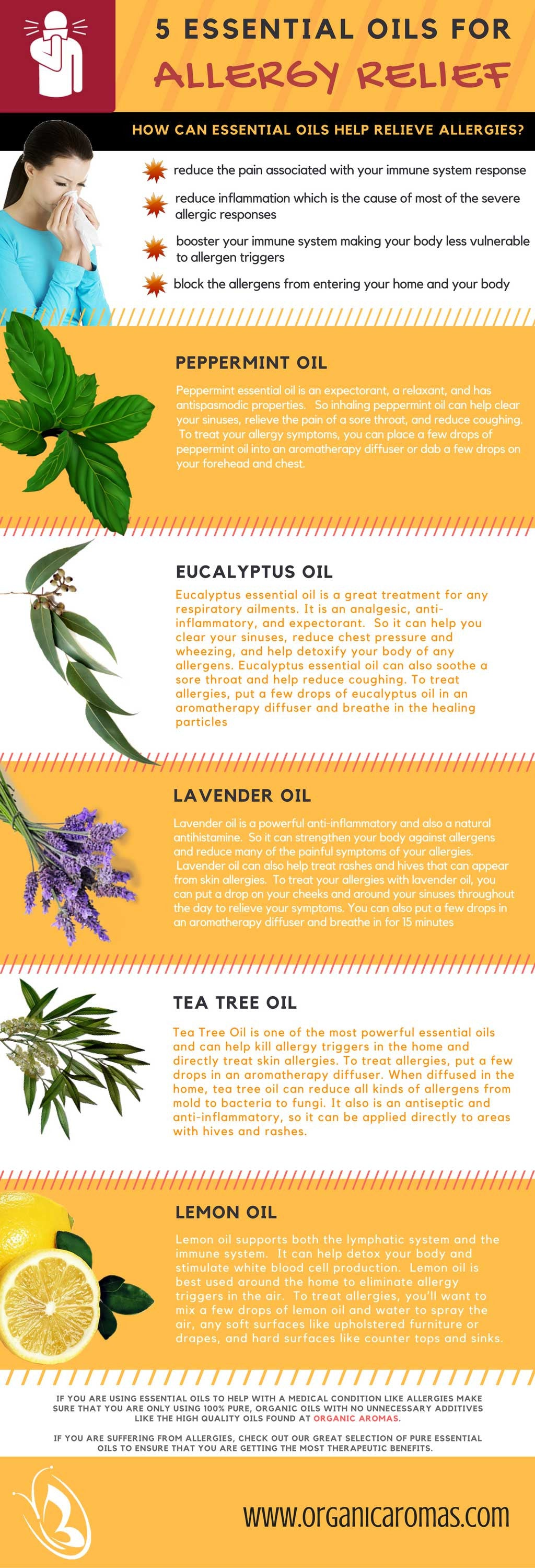 5 Essential Oils For Allergy Relief - Organic Aromas