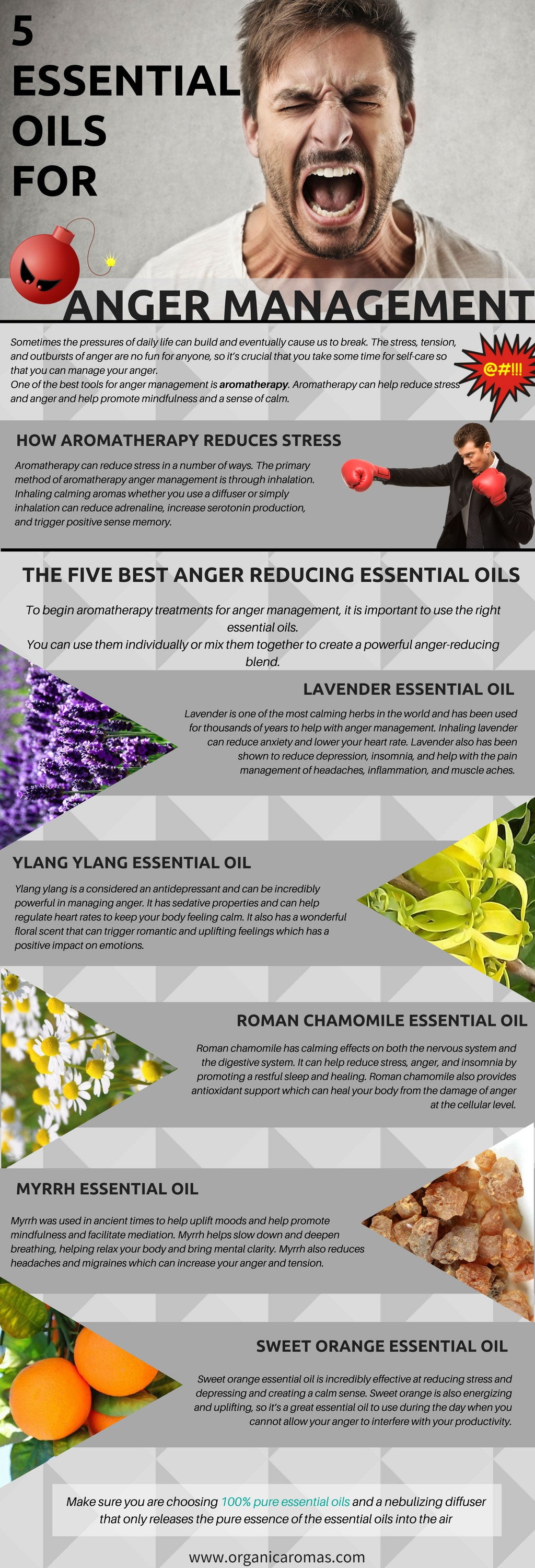 5 Essential Oils For Anger Management Organic Aromas