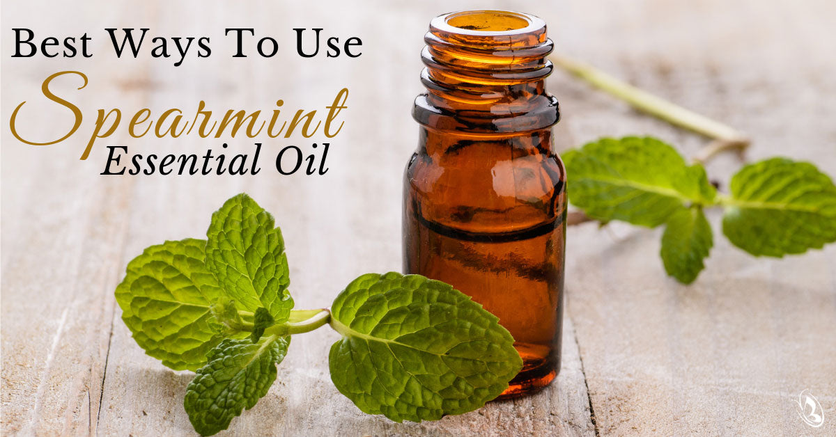 Best Ways to Use Spearmint Essential Oil