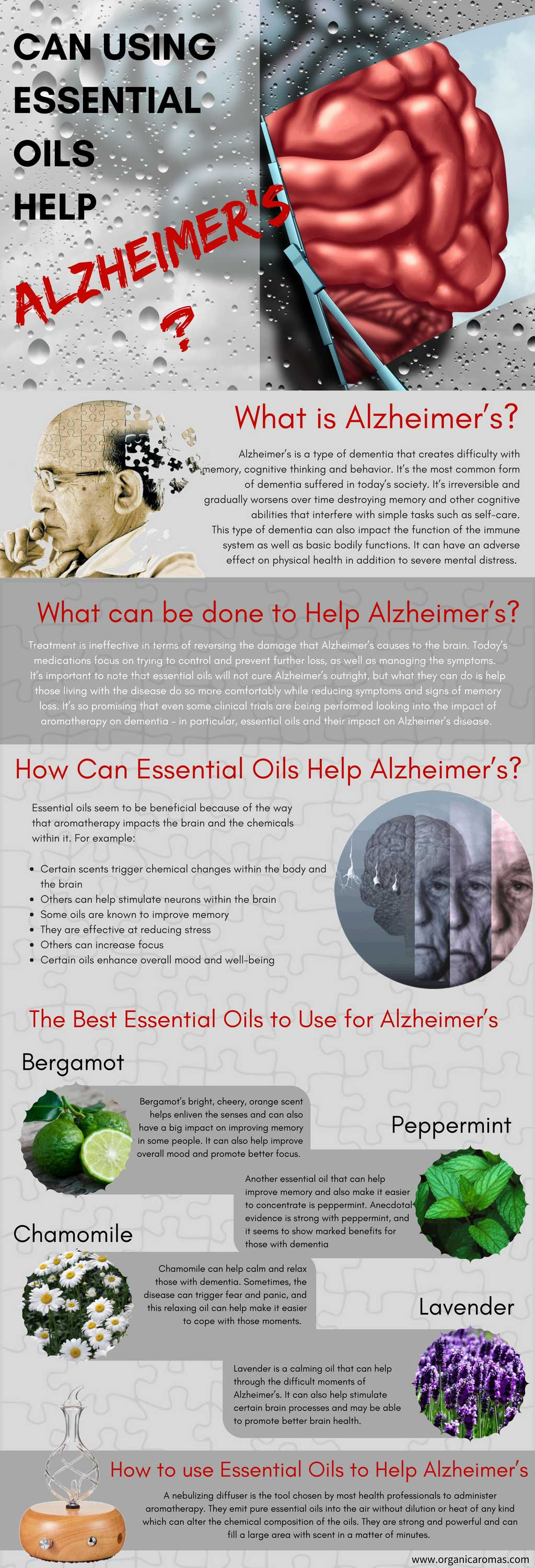 Can Essential Oils Help Alzheimer's - Info-graphic