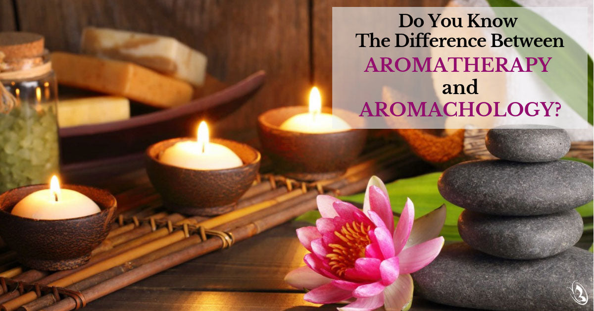 Do You Know The Difference Between Aromatherapy And Aromachology?