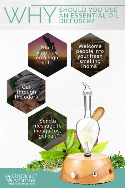 Why You should Use and Essential Oil Diffuser