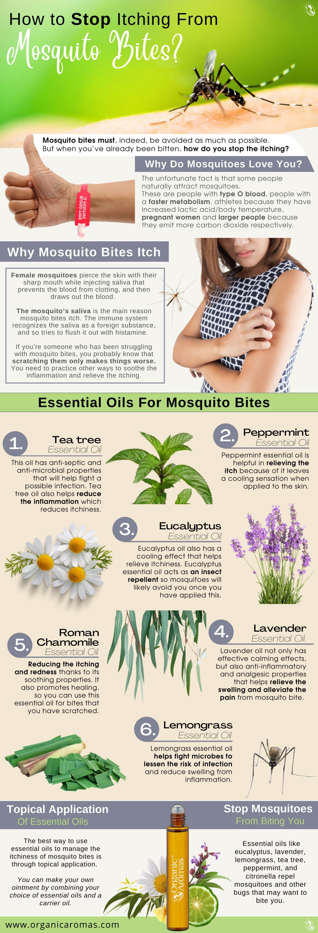 How to Stop Itching From Mosquito Bites?