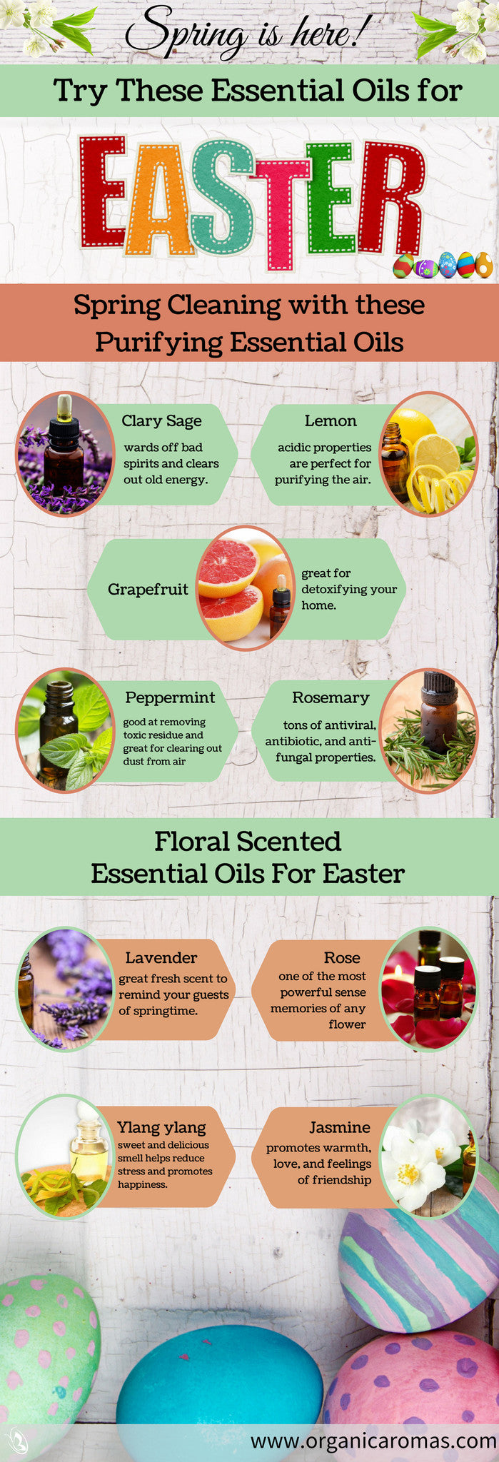 Essential Oils for Easter Infographic