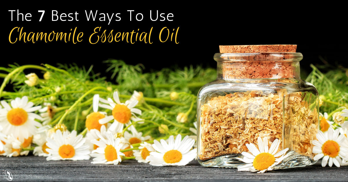 The 7 Best Ways To Use Chamomile Essential Oil