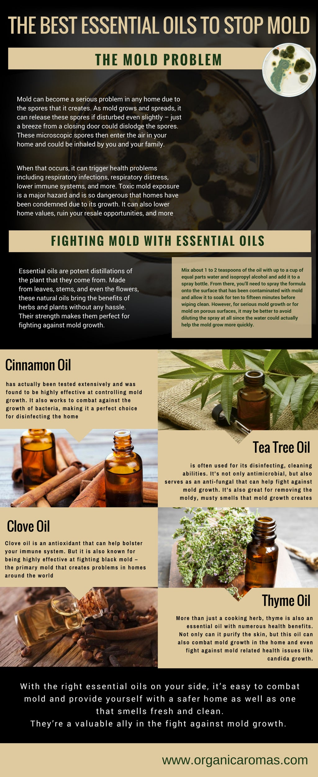Essential Oils to Stop Mold Info-graphic