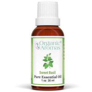 sweet basil pure essential oil by organic aromas 30ml