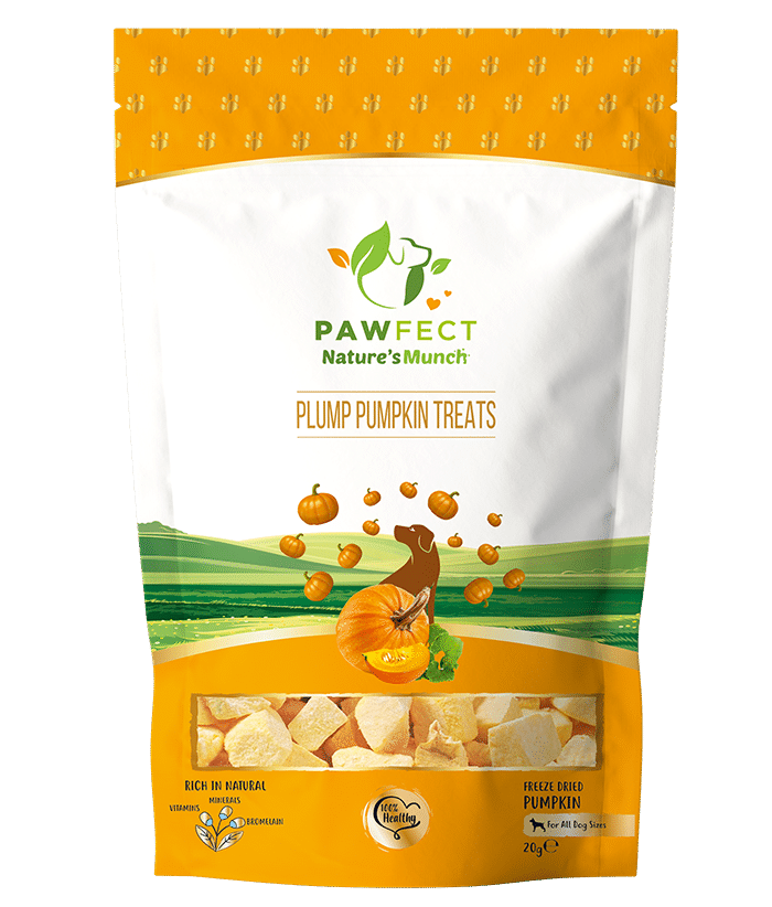 Finnest Pumpkin Treats