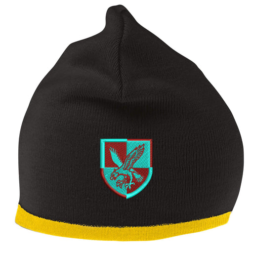 16 Air Assault Brigade Beanie Hat