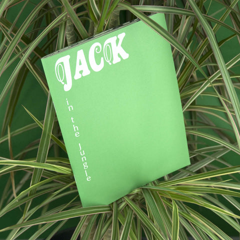 Jack In The Jungle, Bernard Walsh