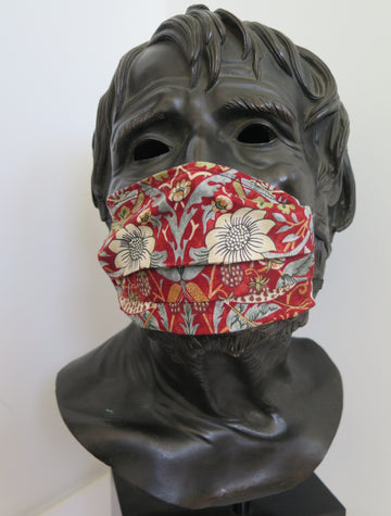 TJC Face Mask: Liberty - Strawberry Thief Marigold  RED