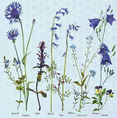 Card (Annabel Langrish): Cornflowers and Bluebells