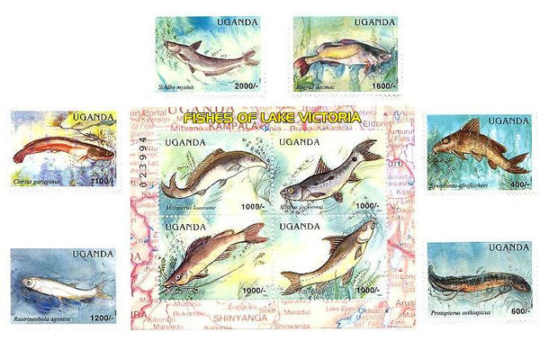 Fishes of Lake Victoria