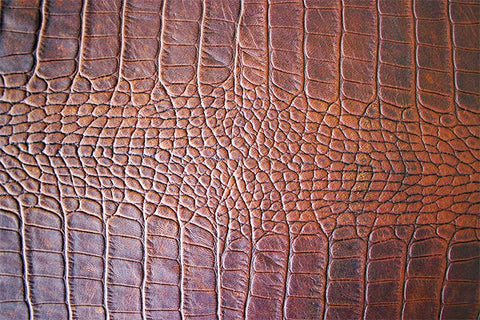 alligator leather care cleaning