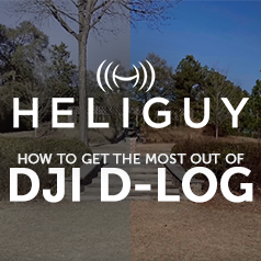 Heliguy's Guide to DJI D-LOG