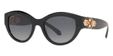 bvlgari 8221b 501t3 polarised