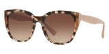 valentino va4040 509713 havana and beige