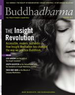 Buddhadharma - The Practitioner's Quarterly - Winter 2013