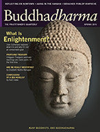 Buddhadharma - The Practitioner's Quarterly - Spring 2013