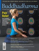 Buddhadharma - The Practitioner's Quarterly - Fall 2010