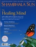 January 2011 - The Healing Mind - Plus Free Mindful Supplement