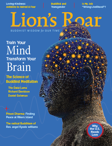 January 2018 Lion's Roar Mind and Brain