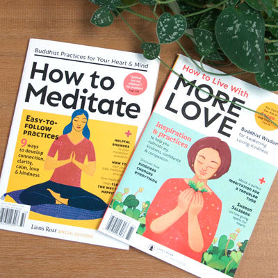 How to Meditate & How to Live with More Love – Lion's Roar Special Editions