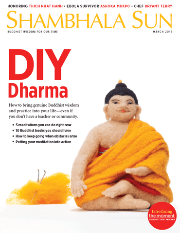 March 2015 - DIY Dharma