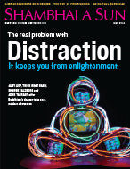 May 2014: The Real Problem with Distraction: It keeps You from Enlightenment