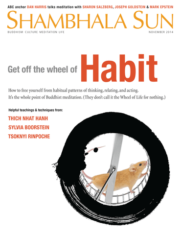 November 2014 - Get off the wheel of Habit